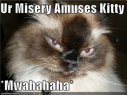miserykitty