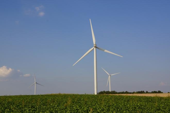 windfarm