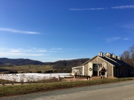 it's a beautiful day for wine! (Pippin Hill)